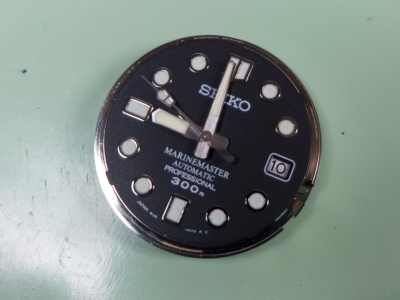 P1020061a